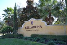 BellaNona Grande Estates / BellaNona Grande Estates is a small neighborhood of Executive style and Estate level homes, many of which are custom built homes.  BellaNona Grande Estates is located in the Lake Nona area of Orlando Florida.  Learn More at www.nonaorlandoproperties.com/bellanona-grande-estates/