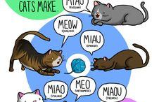 Lenguaje de animales