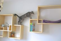 cat + book furniture