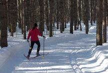Winter Activities in the Sault