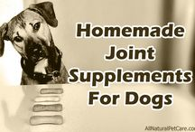 Dog Supplements & Vitamins / List of stuff related to dog supplements. Tips and articles on the best dog supplements for your dog's situation. Also cover benefits, vitamins, skin and coat, news, and ideas. Everything to help give your dog a healthy life.