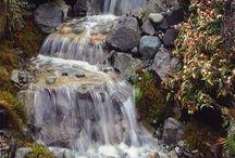víz.kő.kert