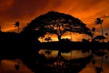 Art project: African sunset