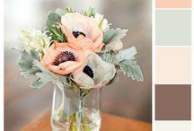 Color palet / Decor colors