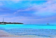 Hoteluri si resorturi in Bora Bora