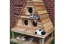 Kedi evi - Kedi kulübesi / ahsapali.com