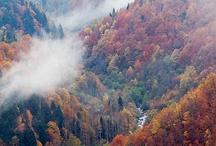 Val d'Aran  en automne