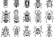 insects & inverterbrates