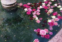 Romantik :)