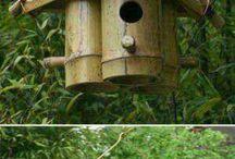 para aves