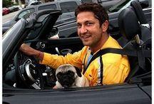 Celebrities Who Love Pugs