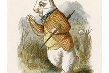 white rabbit and others / králici a jiní mucánci