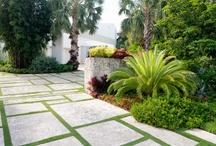 Raymond Jungles gardens