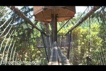 tree houses/tree house village ideas