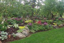 Yard and Garden / by Rhonda Thomas