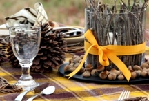 Outdoor Thanksgiving / Are you celebrating #Thanksgiving? So are we! Here are some ways to make your outdoors more festive! #Holidays