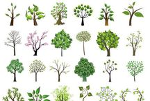 イラスト・樹木