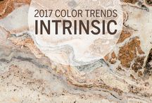 Color Trends 2017 / Nourish your imagination with expert insight from Dutch Boy®. We'll show you color palettes and possibilities that will spark innovation, soothe your soul and keep your imagination flowing with ideas.