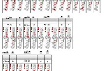 clarinet fingering charts etc.