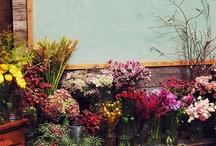 flower school♡