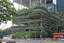 ARCHITECTURE VEGETALE ASIE / Sous l'équateur, la permanence des précipitations autorise tout type de végétalisation avec des apports en eau issus de la collecte des eaux de pluie.