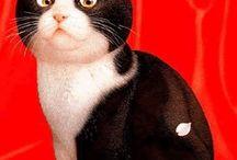 Macskákok-művészet...(?) / ...kis kedvenckék szeretetteli ábrázolása, bármi módon...