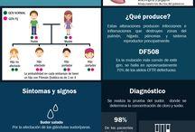 Clase Fibrosis Quística