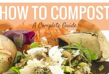 Organic Composting Tips and Tricks