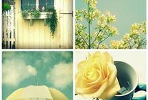 Yellow Umbrella / by Renata Lamezi
