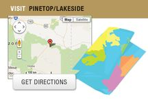 Pinetop-Lakeside Local Info / There's plenty to do in Pinetop-Lakeside. Find out why this White Mountain area is known for family fun vacations.