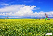 QingHai tour, travel guide www.westchinago.com info@westchinago.com / QingHai tour, travel guide www.westchinago.com info@westchinago.com