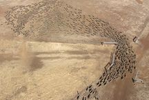 Aerial photography / Aerial photographs of farms and landscapes