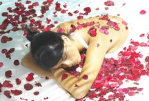 Wellness Holidays / De-stress, unwind and relax. Choose a perfect holiday to break away from stresses and strains and indulge in pure relaxation in luxurious surroundings. http://www.healthandfitnesstravel.com/spa-holidays