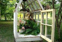 Ogrodnictwo, które uwielbiam / gardening