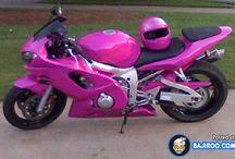 Harley's / Bikes