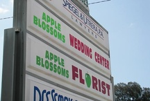 Window Displays at Apple Blossoms Floral Designs / Our Window Displays www.appleblossomstampa.com