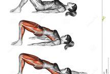 Oefening en dieete