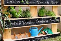 Jardim de legumes