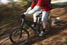 The Best Bikes for Beginners & Guide Beginner Road Bikes