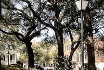 Discover Savannah - Tybee Island, Georgia