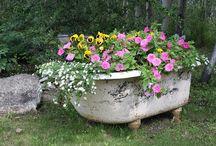baignoire fleurie
