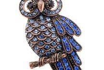 Owl buy