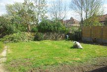 Garden / Garden Layout Ideas