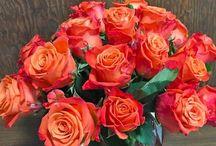 Valentines Day Bouquet