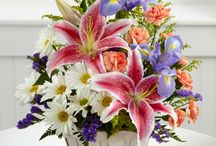 Passover & Easter Flower Arrangements / In celebration of Passover and Easter, we have created this board to highlight our beautiful flowers & gifts.