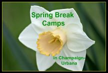 Spring Break in Chambana! / Staying in Champaign-Urbana for Spring Break? Our ideas for what to do with your kiddos!