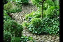 trädgård misc