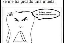 XD  / Humor