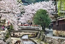 Visit Japan / Spring is one of the best time of the year to visit Japan, because of the beautiful cherry blossoms.