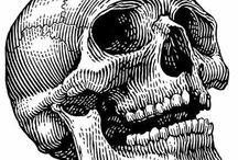 Teschi\Morte